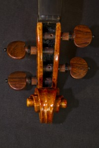 MG 81331